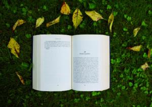 Buch liegt auf Wiese