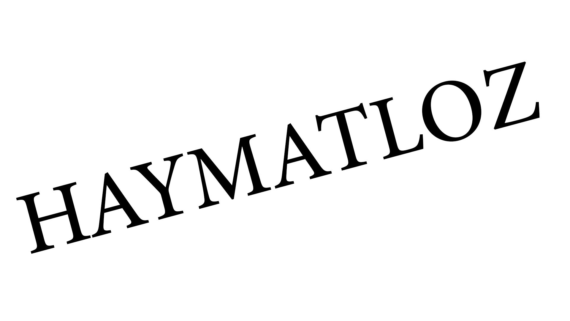 Schriftzug Haymatloz