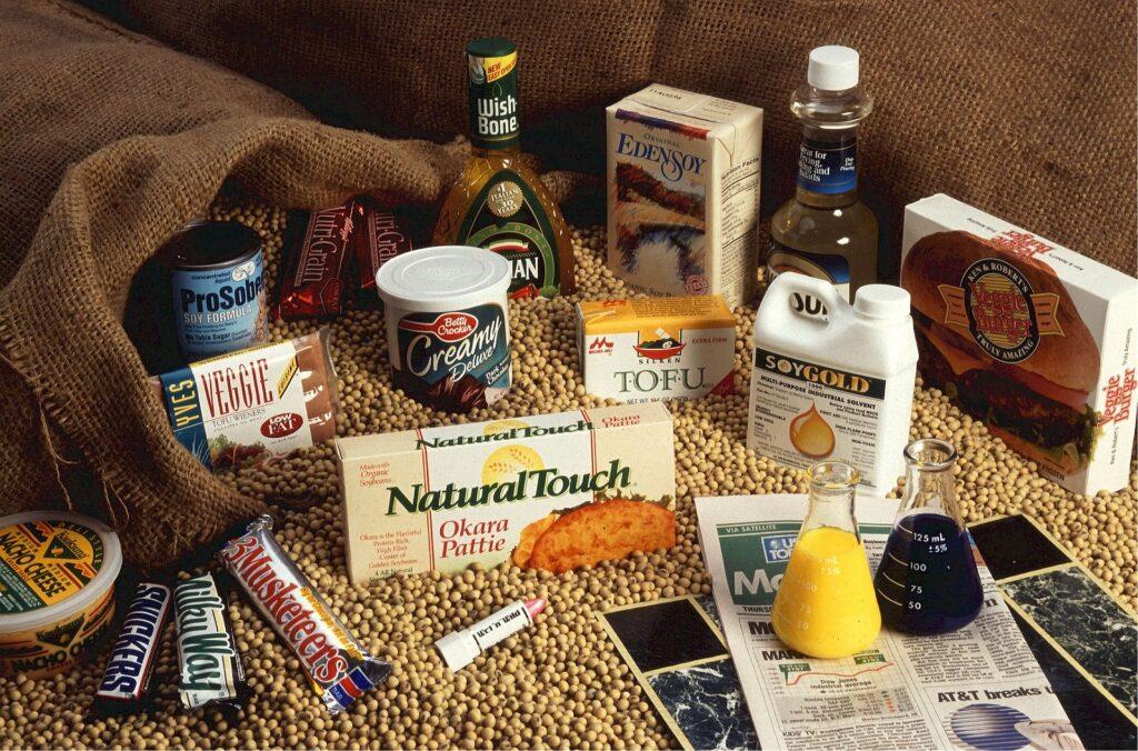 verschiedene Sojaprodukte liegen vor einem Sojabohnenhaufen